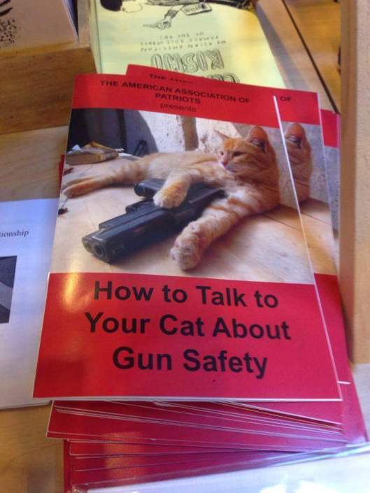 gunsafetyforcats.jpg